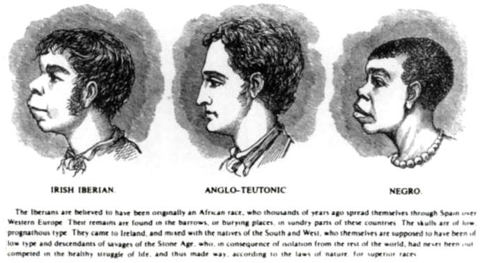 Tegning af H. Strickland Constable. 1899, Irland